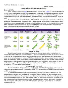 Genes, Alleles, Phenotypes, Genotypes Reading Comprehension