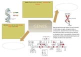 Genes Mind Map