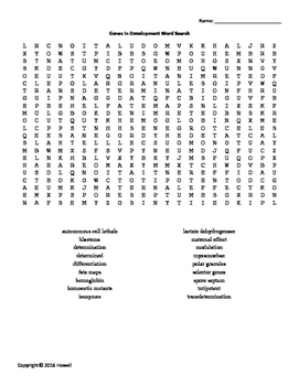 Genes in Development Vocabulary Word Search for Genetics