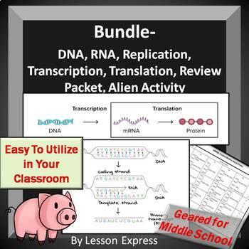 Genetics DNA and RNA Bundle -- Replication, Transcription and Translation