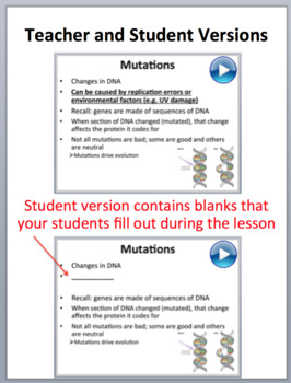 Genetic Disorders - Senior Biology PowerPoint Lesson and Student Notes Package