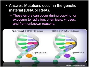 Genetic Disorders and Bioethics, Stem Cells, Cloning, GMO's Lesson Bundle