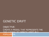 Genetic Drift Activity and PowerPoint