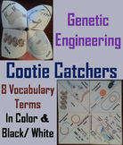 Genetic Engineering Activity/ Foldable