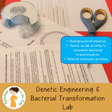 Genetic Engineering and Bacterial Transformation Lab Activity