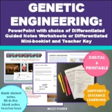 Genetic Engineering Bundle: Power Point, Worksheets and An