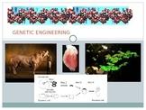 Genetic Engineering Power Point (Gene technology, GMO)