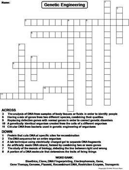 Genetic Engineering Worksheet/ Crossword Puzzle
