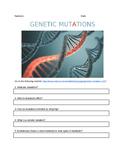 Genetic Mutations WebQuest