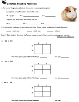 Genetic Practice Problems - Easy Mode (Key)