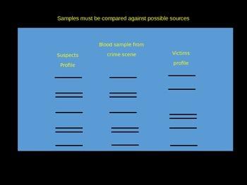 Genetic Profiles