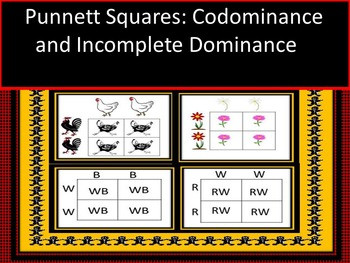 Genetic Punnett Square Practice Dominance and Incomplete Dominance