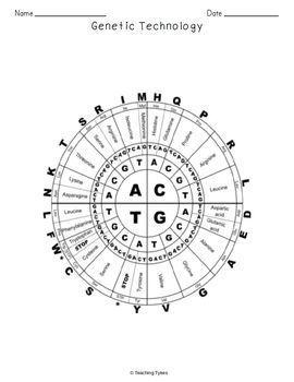 Genetic Technology Biology Science Crossword Coloring Worksheet Middle School