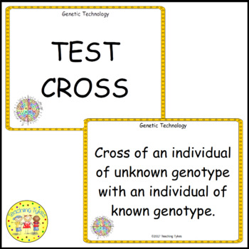 Genetic Technology Vocabulary Cards