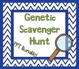 Genetic Traits Scavenger Hunt w/ Student Worksheet