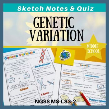 Genetic Variation Doodle Notes & Quiz {Works towards NGSS MS-LS3-2}