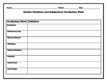 Genetic Variation and Adaptation Vocabulary Sheet