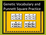 Genetic Vocabulary and Punnett Square Practice
