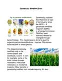 Genetically Engineered Corn
