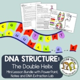 DNA Discovery & Structure - Genetics PowerPoint and Handouts - Distance Learning