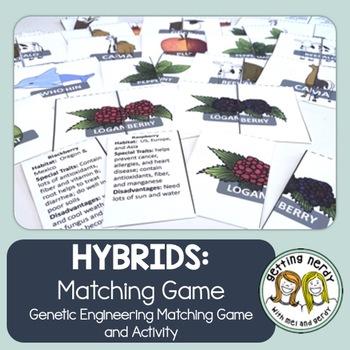 Hybrid Organisms Activity