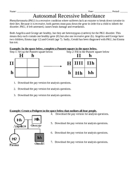 Genetics: Autosomal recessive inheritance worksheet by Beverly Biology