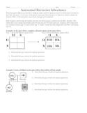 Genetics: Autosomal Recessive Inheritance Punnett squares & Pedigree worksheet