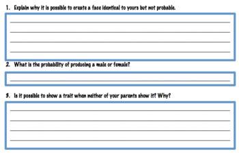 Genetics Activity - Phenotypes, Genotypes, Traits & Alleles (Editable)