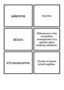 Genetics basics matching cards