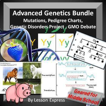 Genetics Bundle - DNA, RNA, Mendel, Traits, Punnett Square, Mutations, Disorders