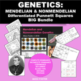 Genetics Bundle: Mendelian and non-Mendelian Punnett Squares PPt, WS, Word Wall