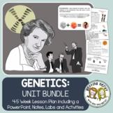 Genetics - PowerPoint & Handouts Bundle