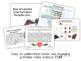 Genetics & Heredity - PowerPoint & Handouts Bundle