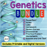 Genetics Bundle  Powerpoint Notes Labs Worksheets Review Games Tests