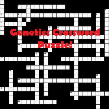 Genetics Crossword Puzzle with ANSWER KEY!