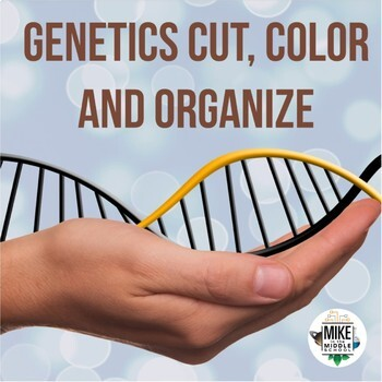 Genetics Cut, Color and Organize for Middle School