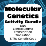 Molecular Genetics: DNA, Central Dogma, Transcription, & T