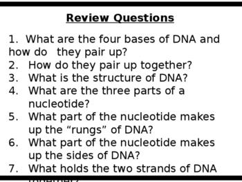 Genetics - DNA, Replication, Transcription & Translation PPT