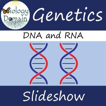 Genetics: DNA Structure Slide Show