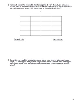 Genetics Dihybrid Punnett Square Practice Packet by ...