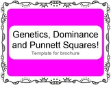 Genetics, Dominance, and Punnett Squares