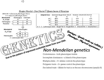 Genetics Notes Doodle-able Page