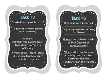 Genetics Foldable Task Cards