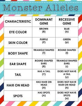 Genetics Four 4 Corners Vocabulary Activity