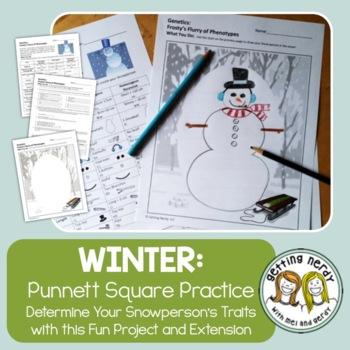 Punnett Squares - Winter Christmas Genetics Activity