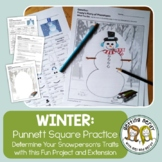 Christmas Science a Winter Genetics Activity - Punnett Squ