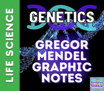 GENETICS: Gregor Mendel GRAPHIC NOTES! NGSS!