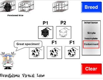 Genetics Guided Inquiry Virtual Lab