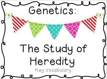 Genetics & Heredity Vocabulary PDF Powerpoint and Mini Book