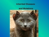 Genetics : Inherited Diseases and Mutations